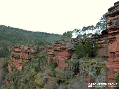 Hoces y cañones del Río Piedra y del Río Gallo -- Laguna Gallocanta - Excursiones en grupo;rutas